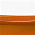 Abs Bianco/arancio Trasparente