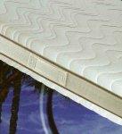 Fisio-memory mattress anti-allergic mite
