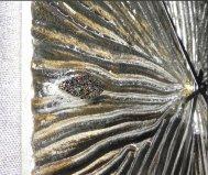 Orologio fossile pintdecor