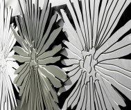 Quadro anemoni pintdecor