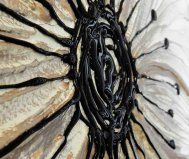 Specchio Petunia oro e argento Pintdecor